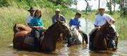 77-pantanal-ruiteravontuur-intro
